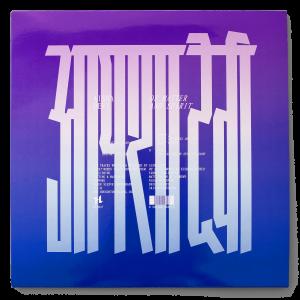 """Aïsha Devi, """"Of Matter and Spirit"""", couverture de l'album (vinyl)"""