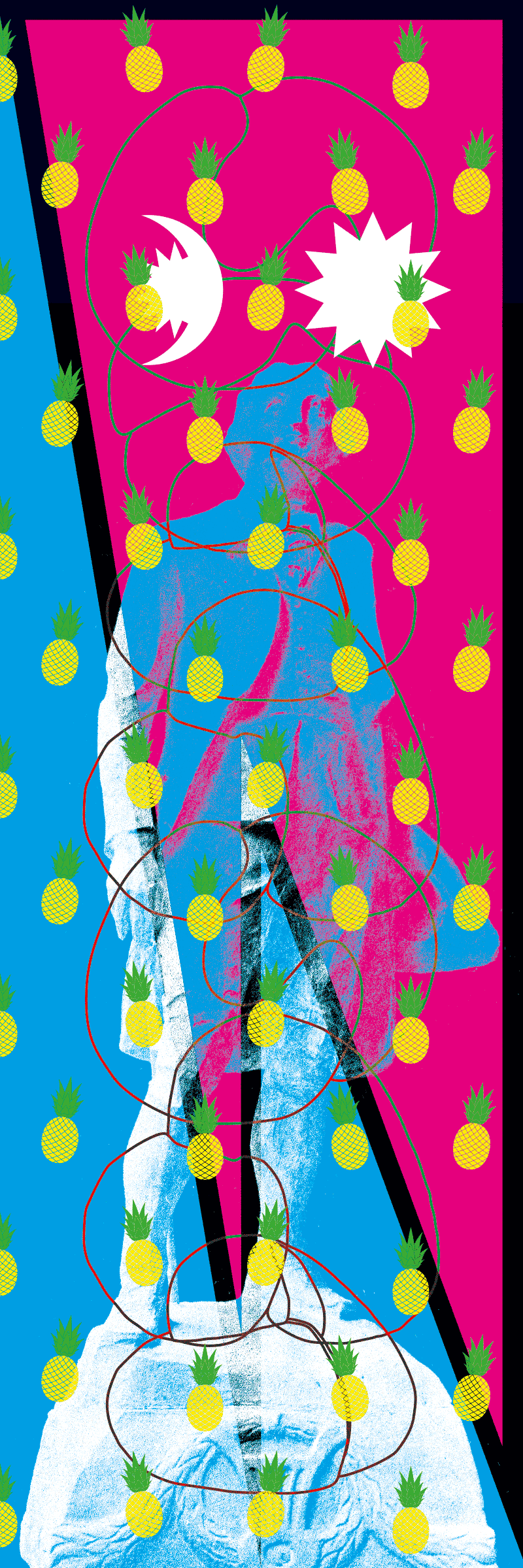 Oriflamme représentant le naturaliste Albrecht von Haller pour l'exposition «Morgenröte, aurora borealis and Levantin: into your solar plexus» organisée par Donatella Bernardi à la Kunsthalle Bern