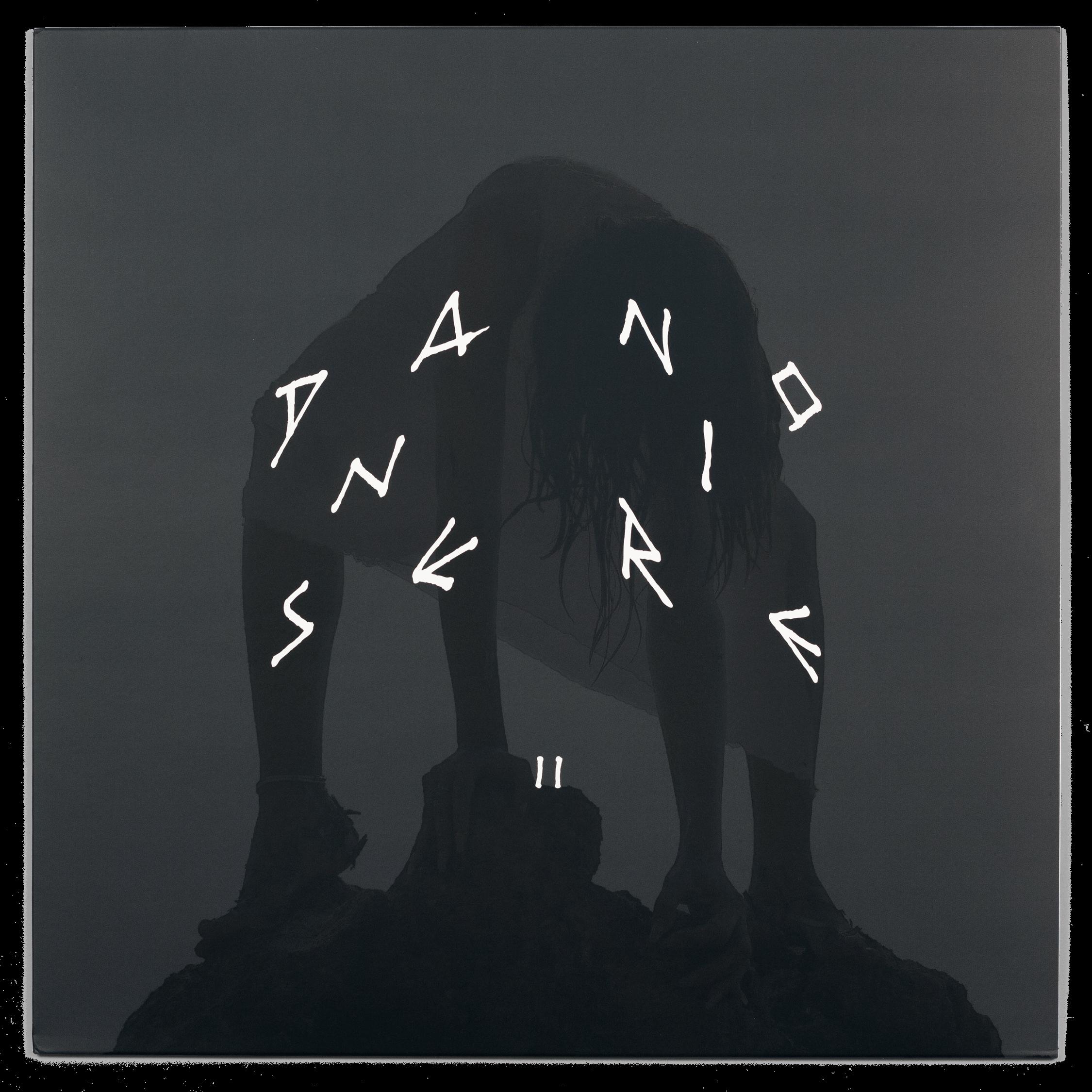 Danse Noire 011, Abyss X, Pleasures of the Bull vinyl, couverture