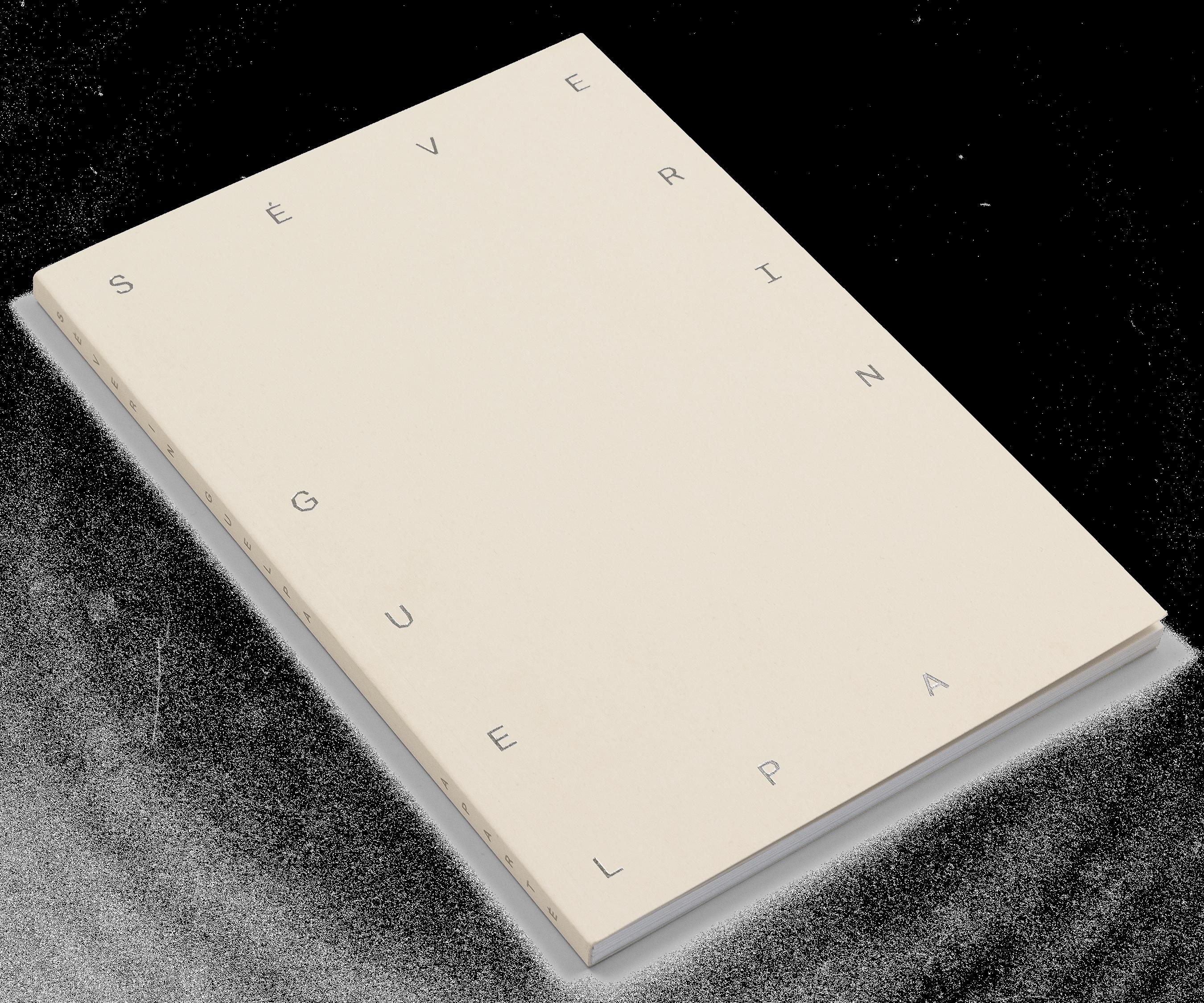 """Couverture du livre """"L'énergie comme véhicule"""" de Séverin Guelpa"""