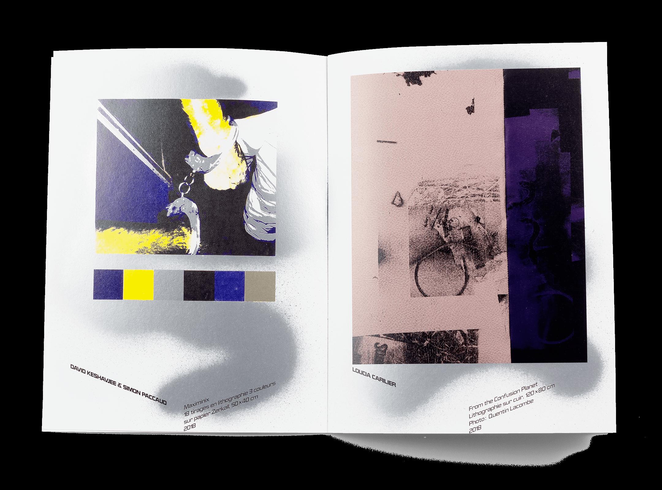 Œuvres de David Keshavjee et Loucia Carlier dans la brochure de l'exposition de Simon Paccaud à la Ferme de la Chapelle